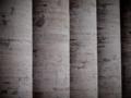 ヴァチカン柱廊