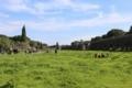 ローマ水道橋遺跡の公園