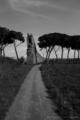 古代ローマの水道橋遺跡のある公園