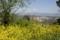 チヴィタ・ディ・バニョレッジョの風景
