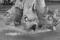 トリトンの噴水