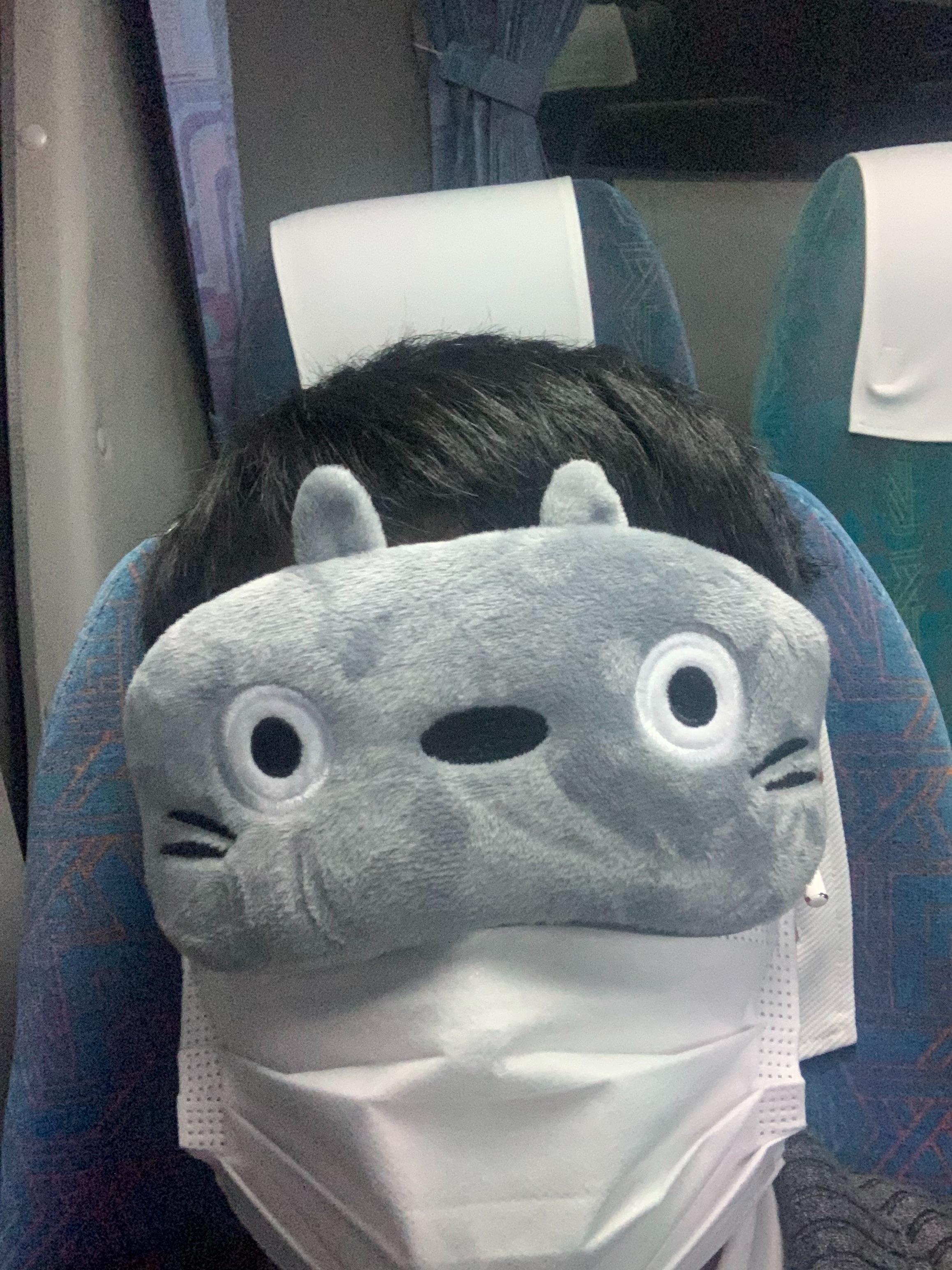 f:id:Chikubishin:20210126081320j:image