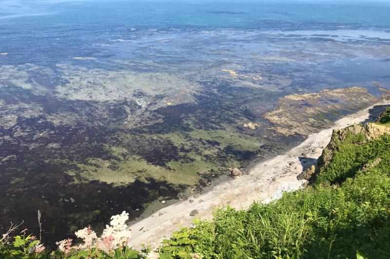 岬の風景6