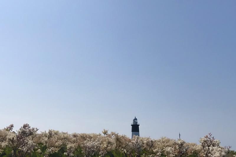 岬の風景9