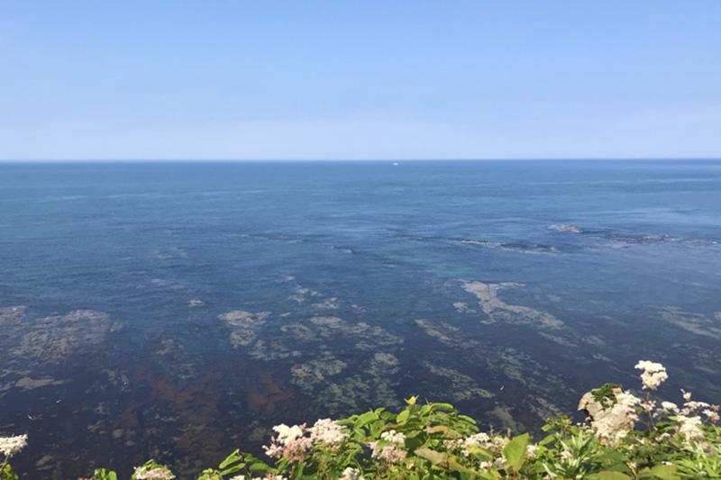 岬の風景7
