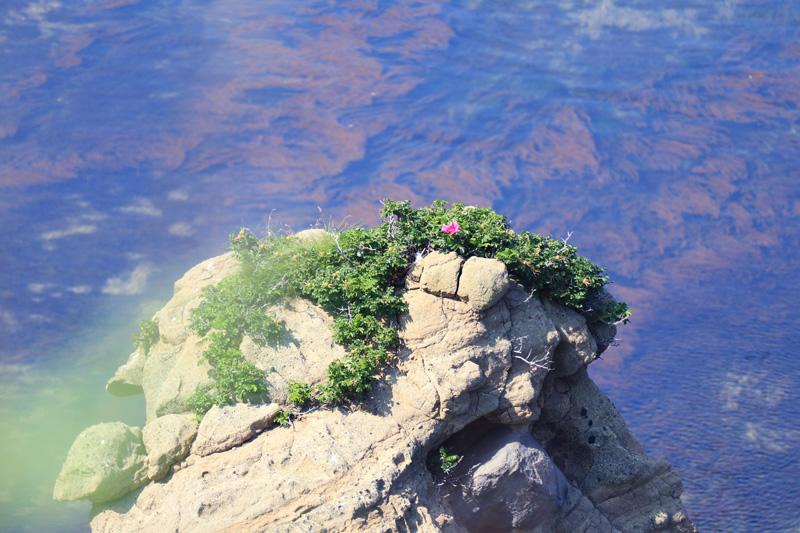 岬の風景8