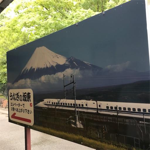 f:id:Cibimokumoku:20190815135619j:image