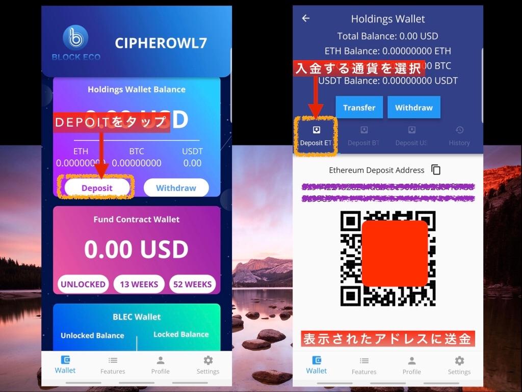 f:id:CipherOwl:20190523201403j:image