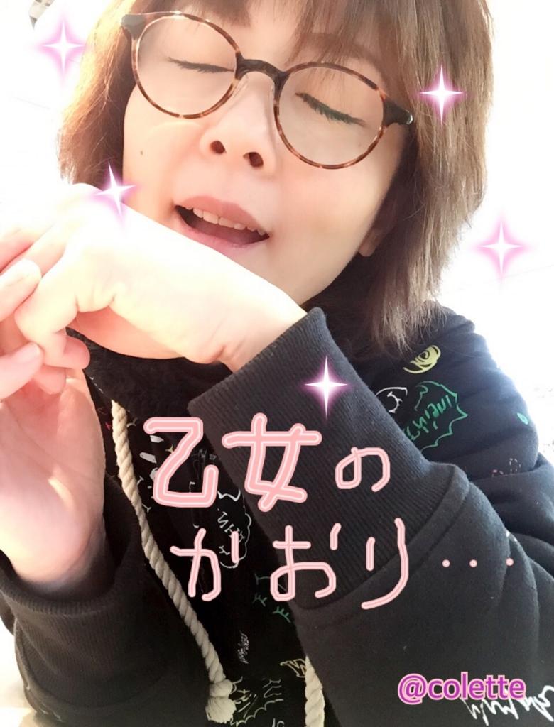 f:id:ColetteMiyazakicity:20161211115233j:plain