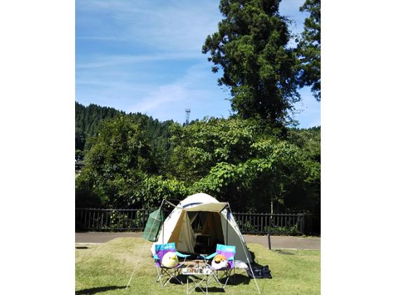 f:id:Corydoras-schwa-schwa:20190627191433p:plain
