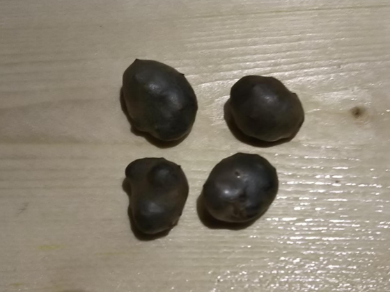 f:id:Corydoras-schwa-schwa:20191015184416p:plain
