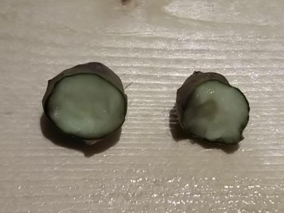f:id:Corydoras-schwa-schwa:20191015184426p:plain