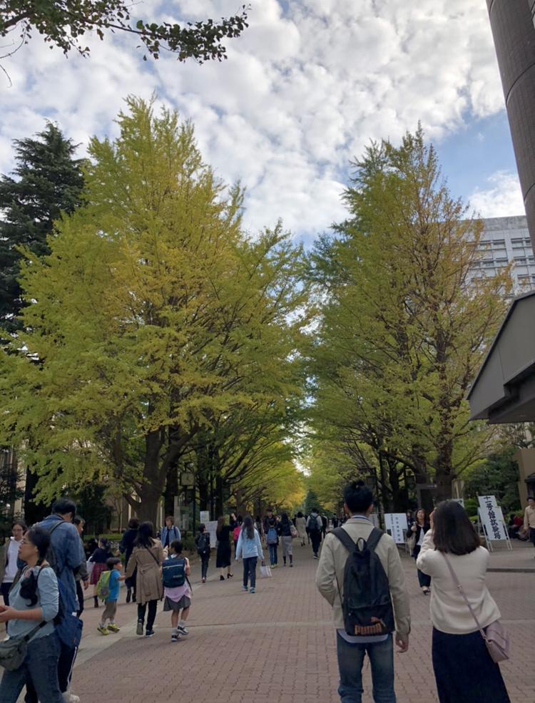 f:id:Cottage_d_Ochanomizu:20181112064410j:plain