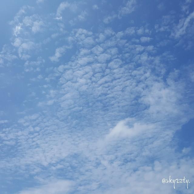 f:id:Crane221083:20170803203817j:image