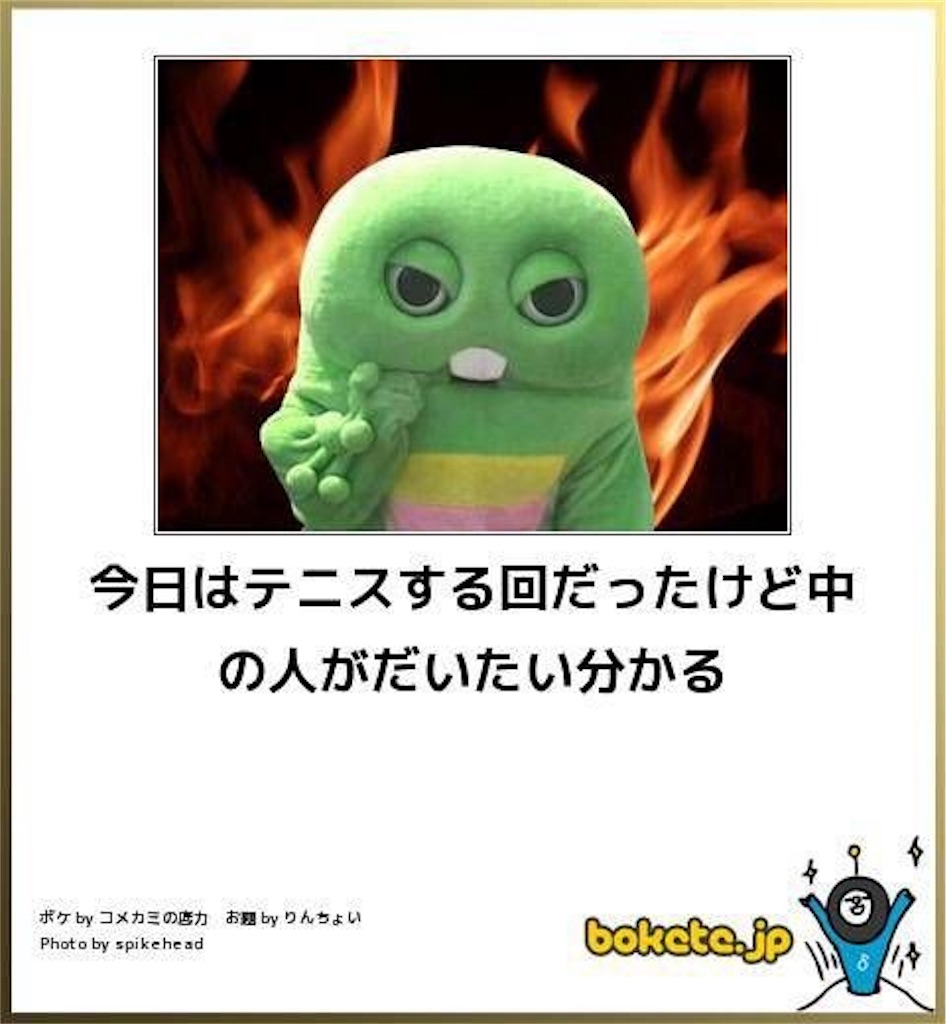 f:id:CurryS:20180209012228j:image