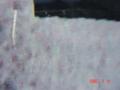 20110726020051