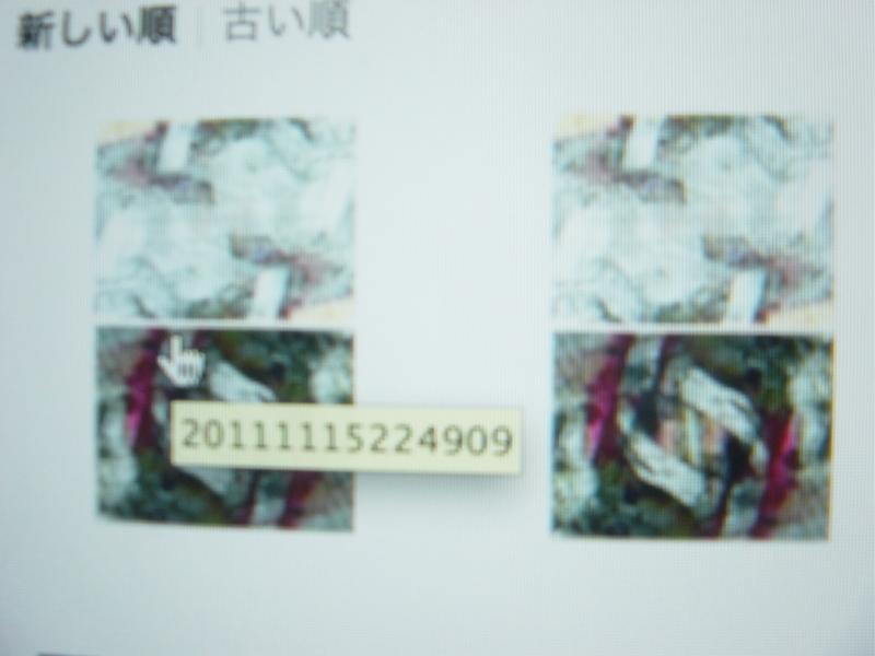 20111116000041