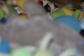 20111130010230