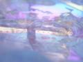 20111213164840