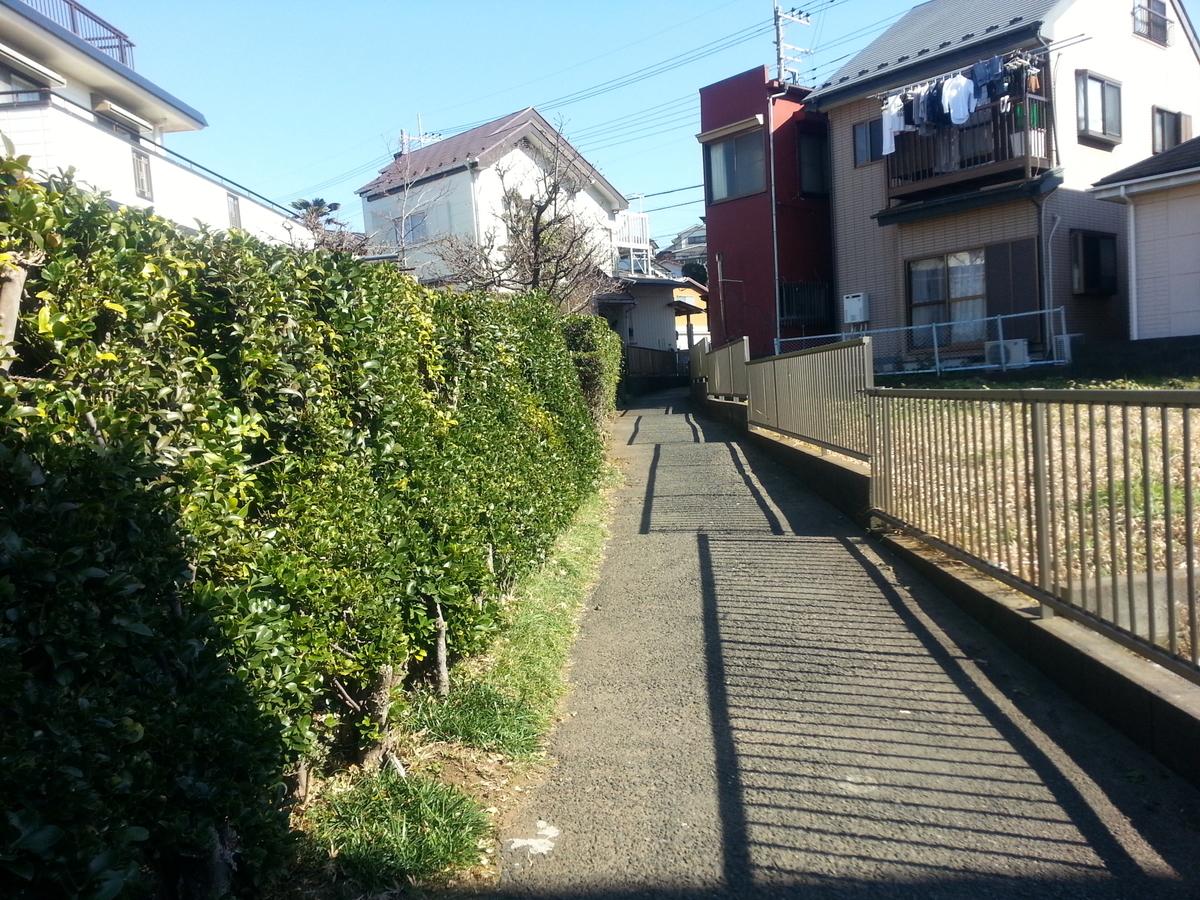 住宅地の道の写真