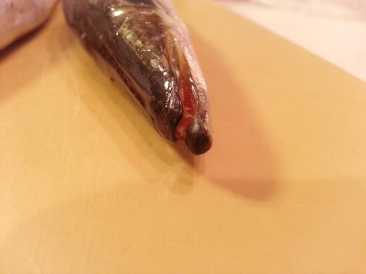 魚の歯の写真