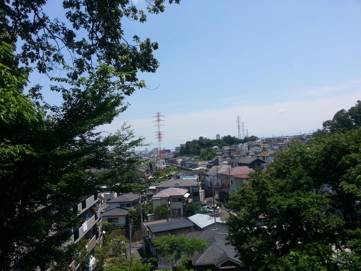 井田山 どんぐり広場