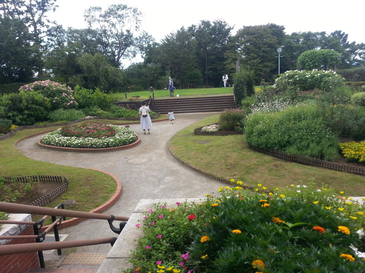 多摩川台公園 花