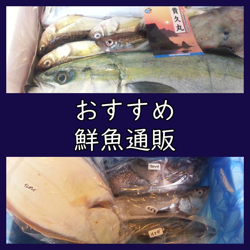 おすすめ 鮮魚通販 お取り寄せ