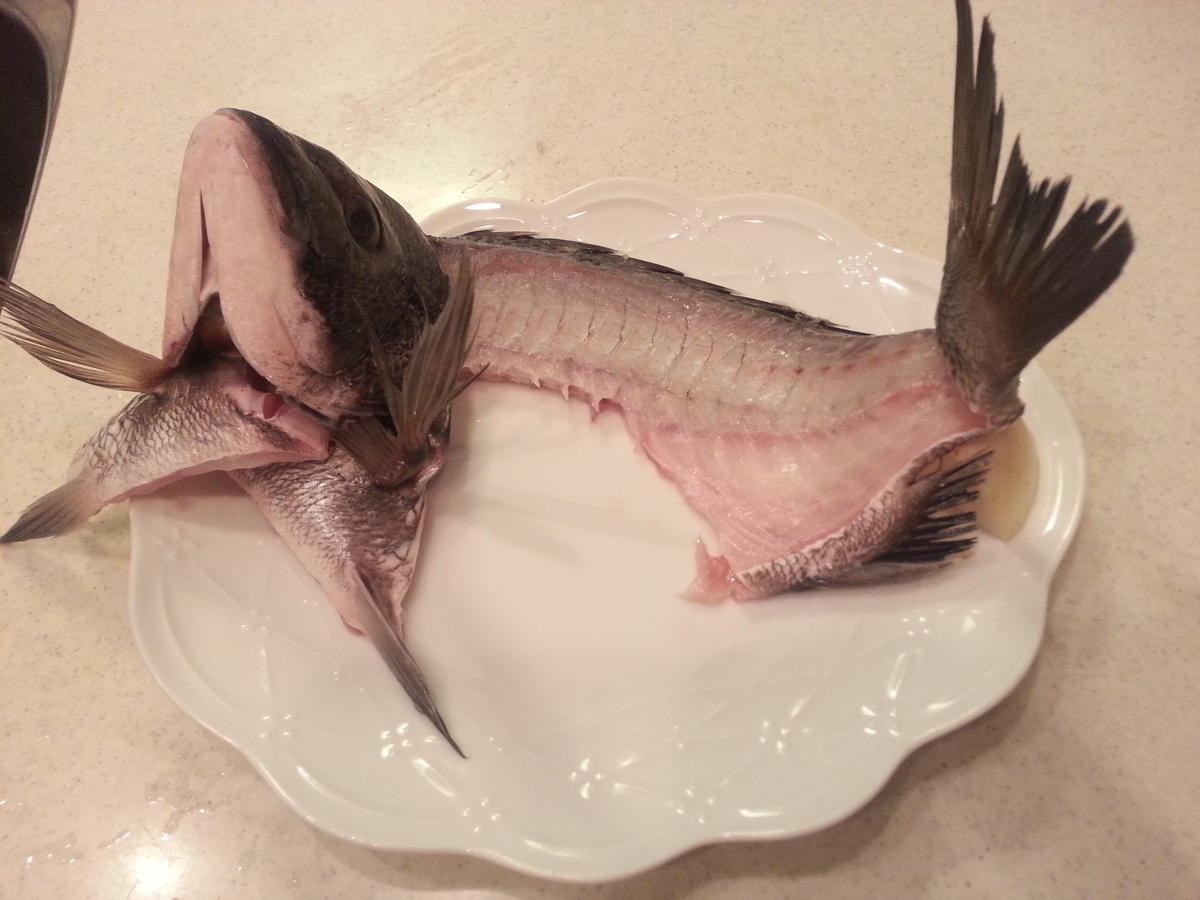 魚 姿造り 土台