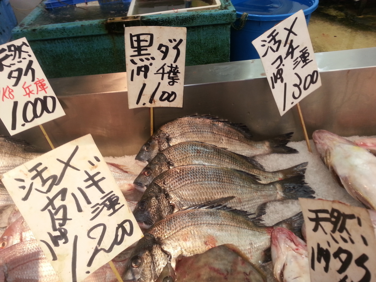 魚屋 クロダイ 活魚