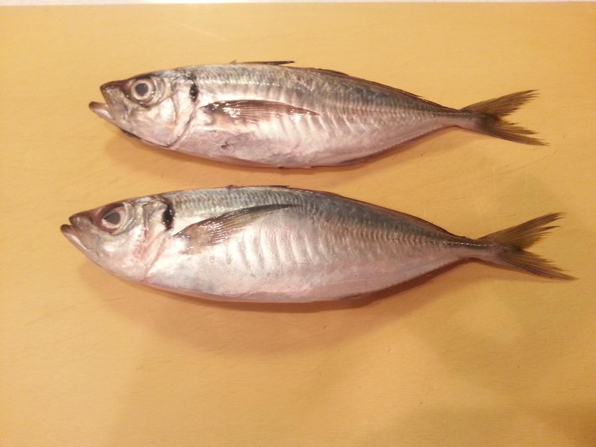 魚 塩焼き 下処理