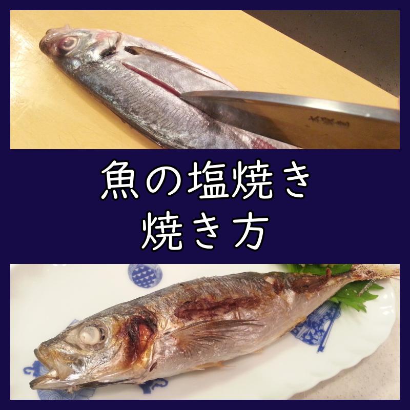 魚の塩焼き 焼き方