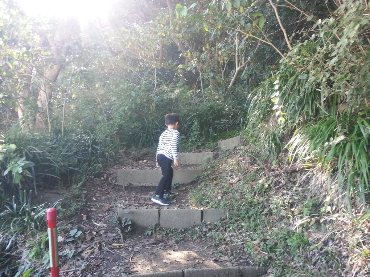 逗子海岸回廊コース ウォーキング 披露山公園