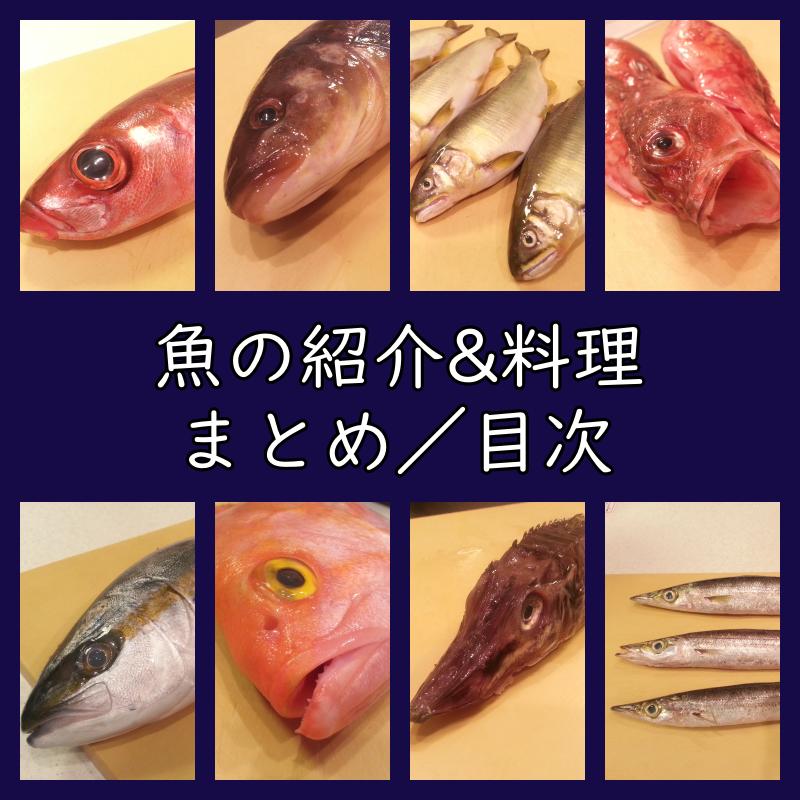 魚の紹介と料理のまとめ