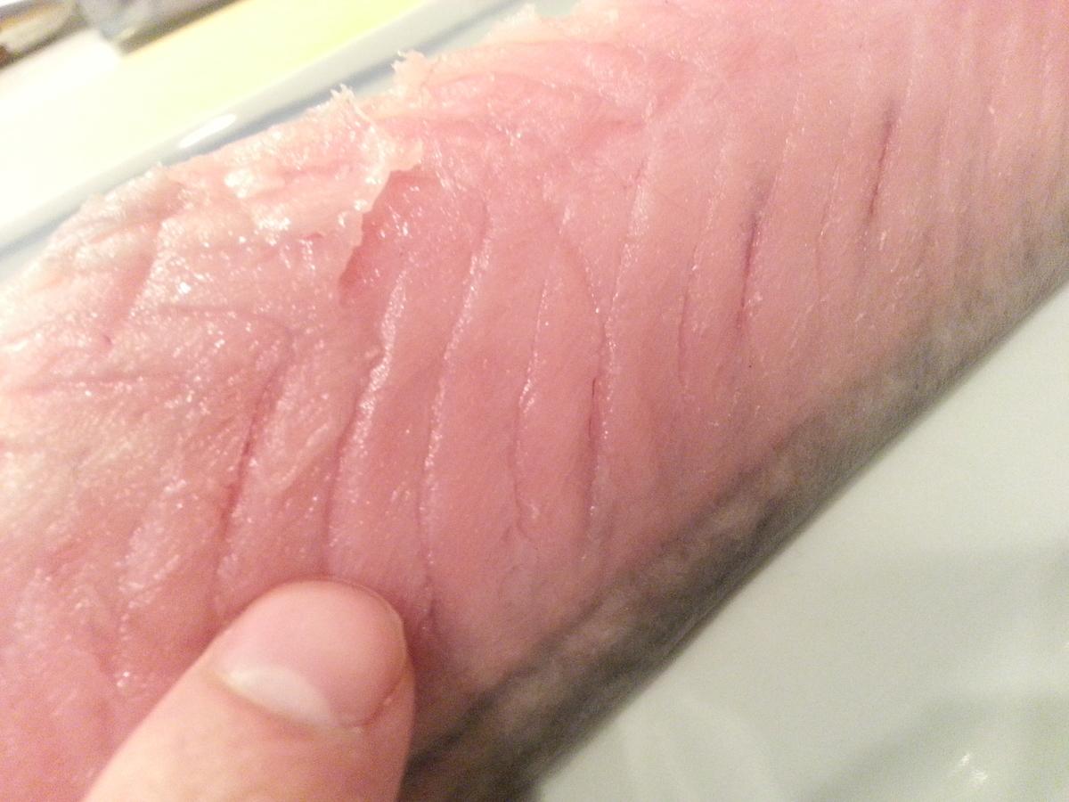 長崎産スマガツオの刺身