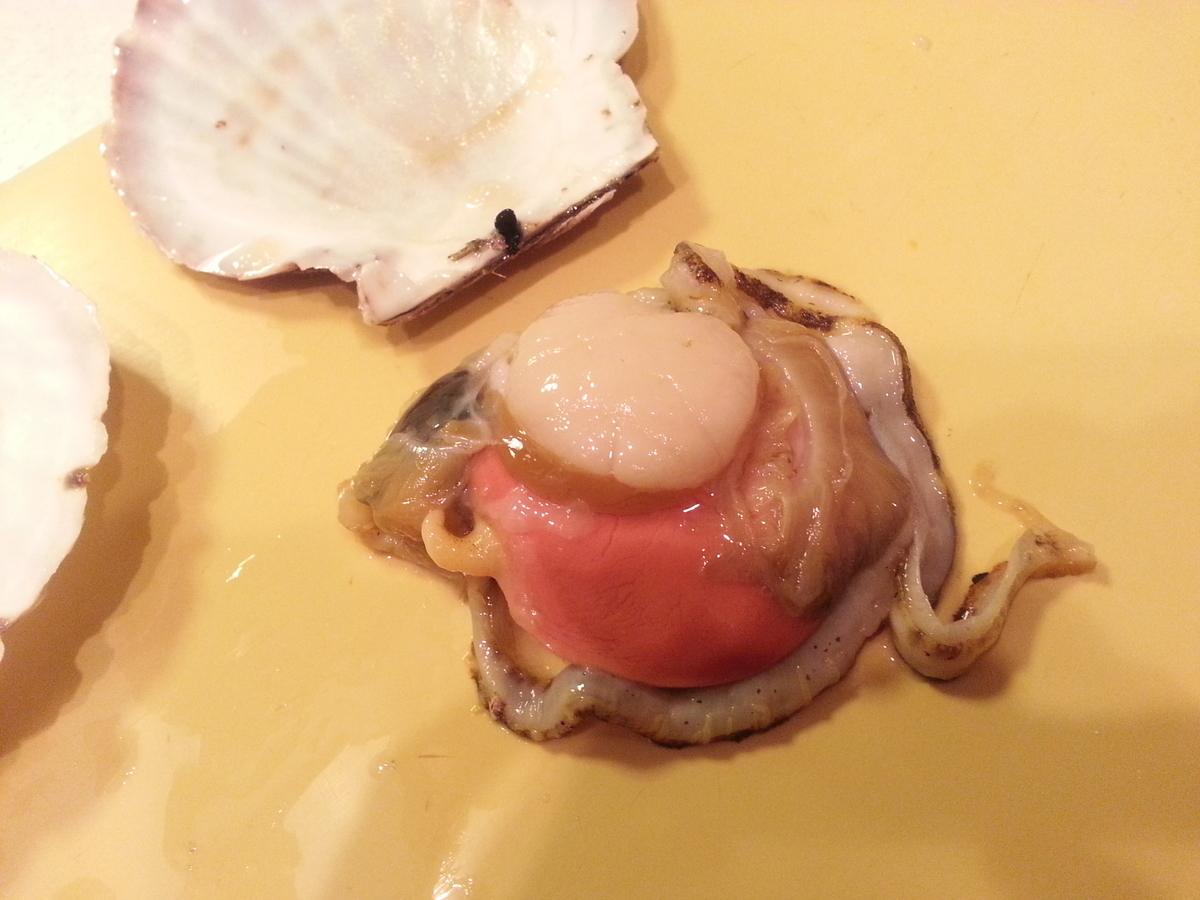 山内鮮魚店 活きホタテ