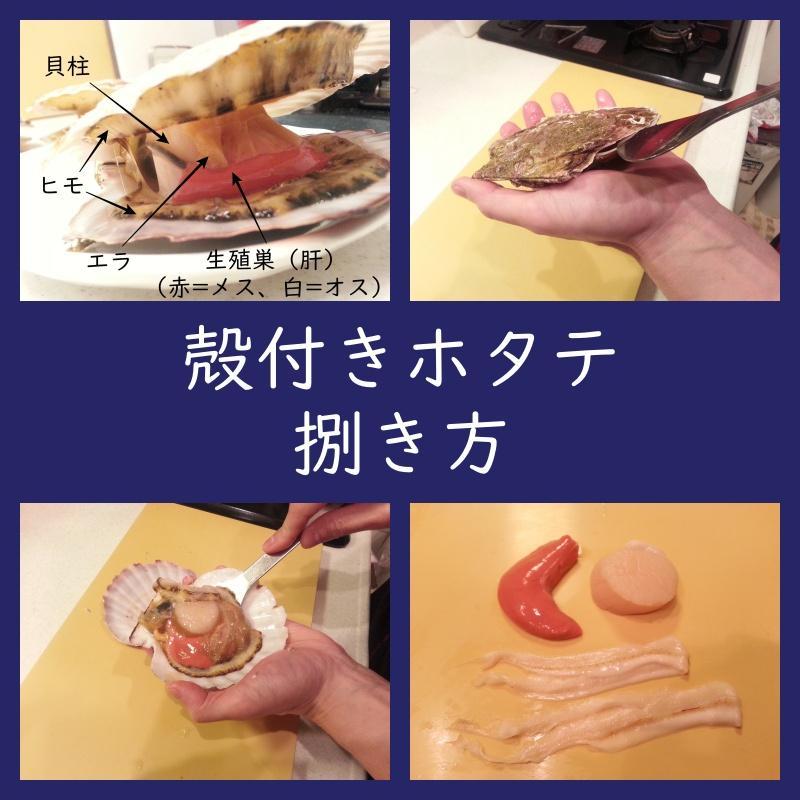 殻付きホタテの捌き方(外し方、剥き方、下処理)