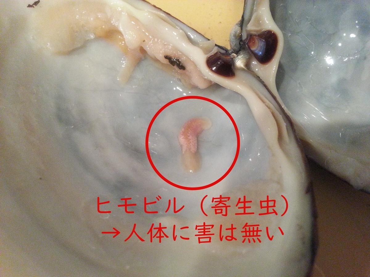 ホッキ貝の寄生虫「ヒモビル」