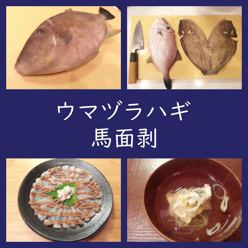 ウマヅラハギ 刺身 アラ汁 作り方