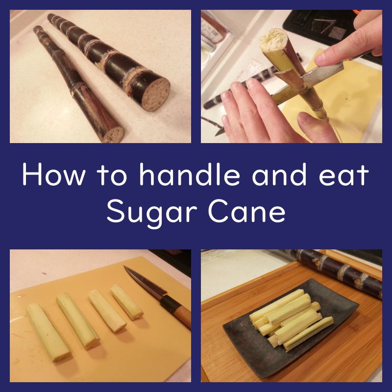 how to handle and eat sugar cane