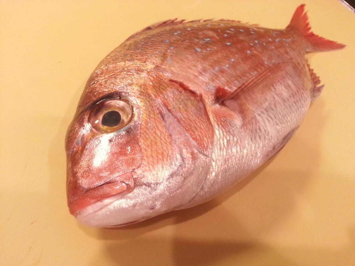 石川県産の天然真鯛