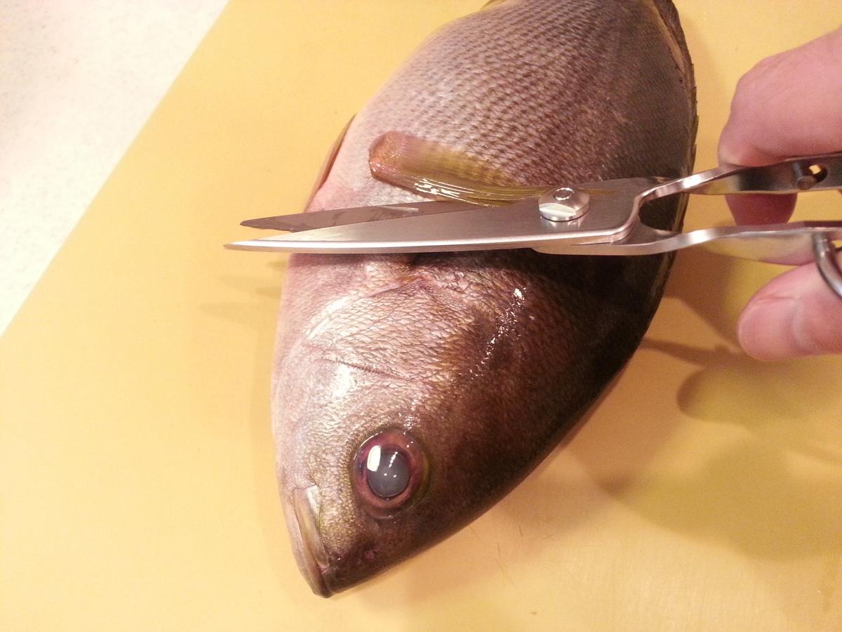 キッチンスパッターで魚のヒレを切る