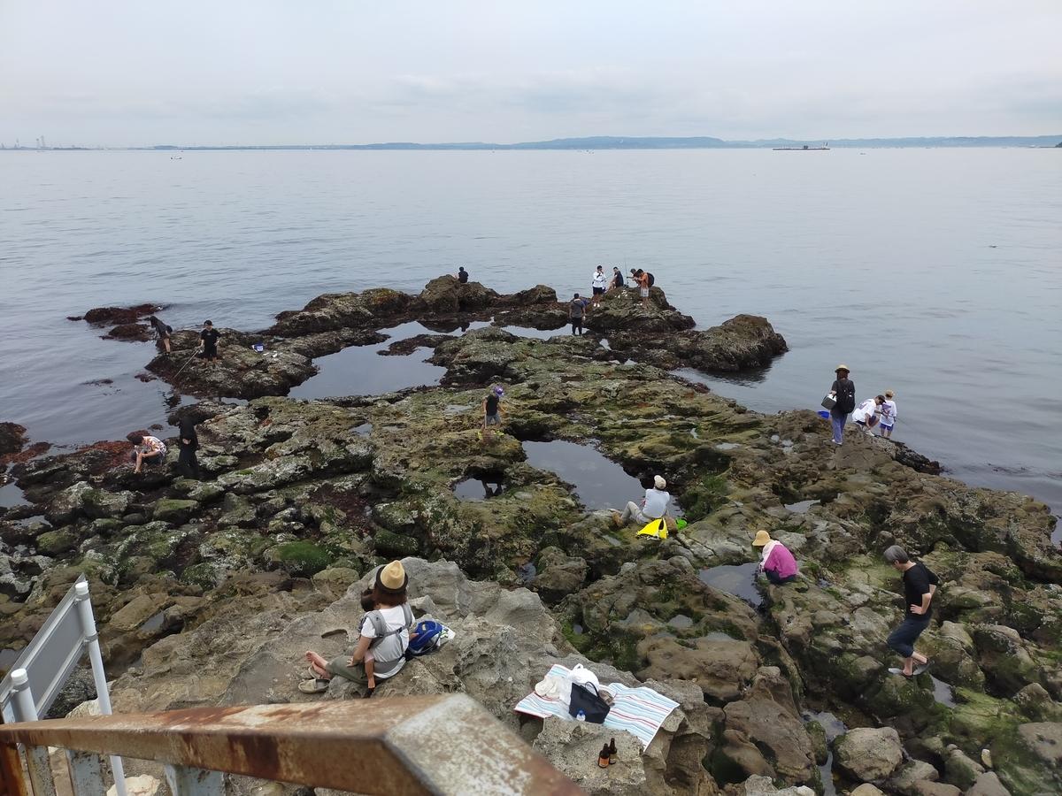 猿島 オイモノ鼻 水遊び 釣り場