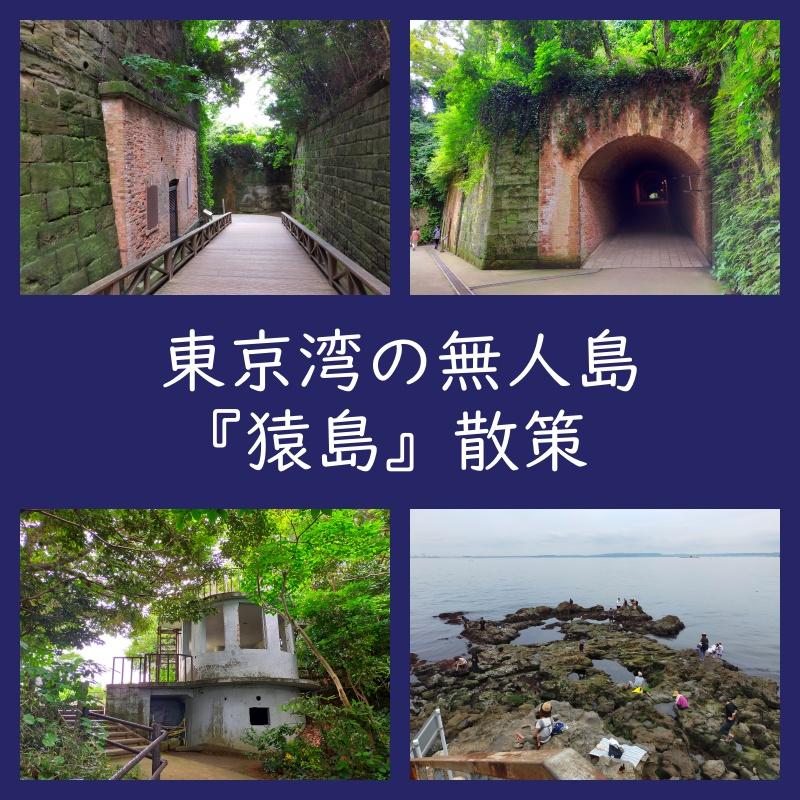猿島 散策 レポートブログ