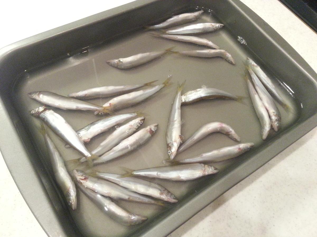 琵琶湖の小鮎の塩焼き