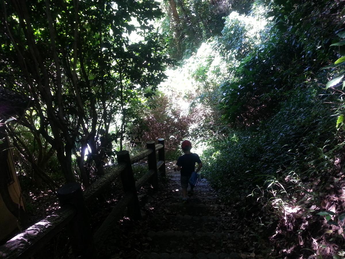 葛原岡・大仏ハイキングコース