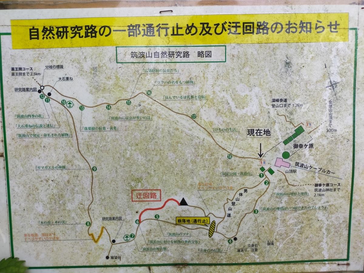 自然研究路地図