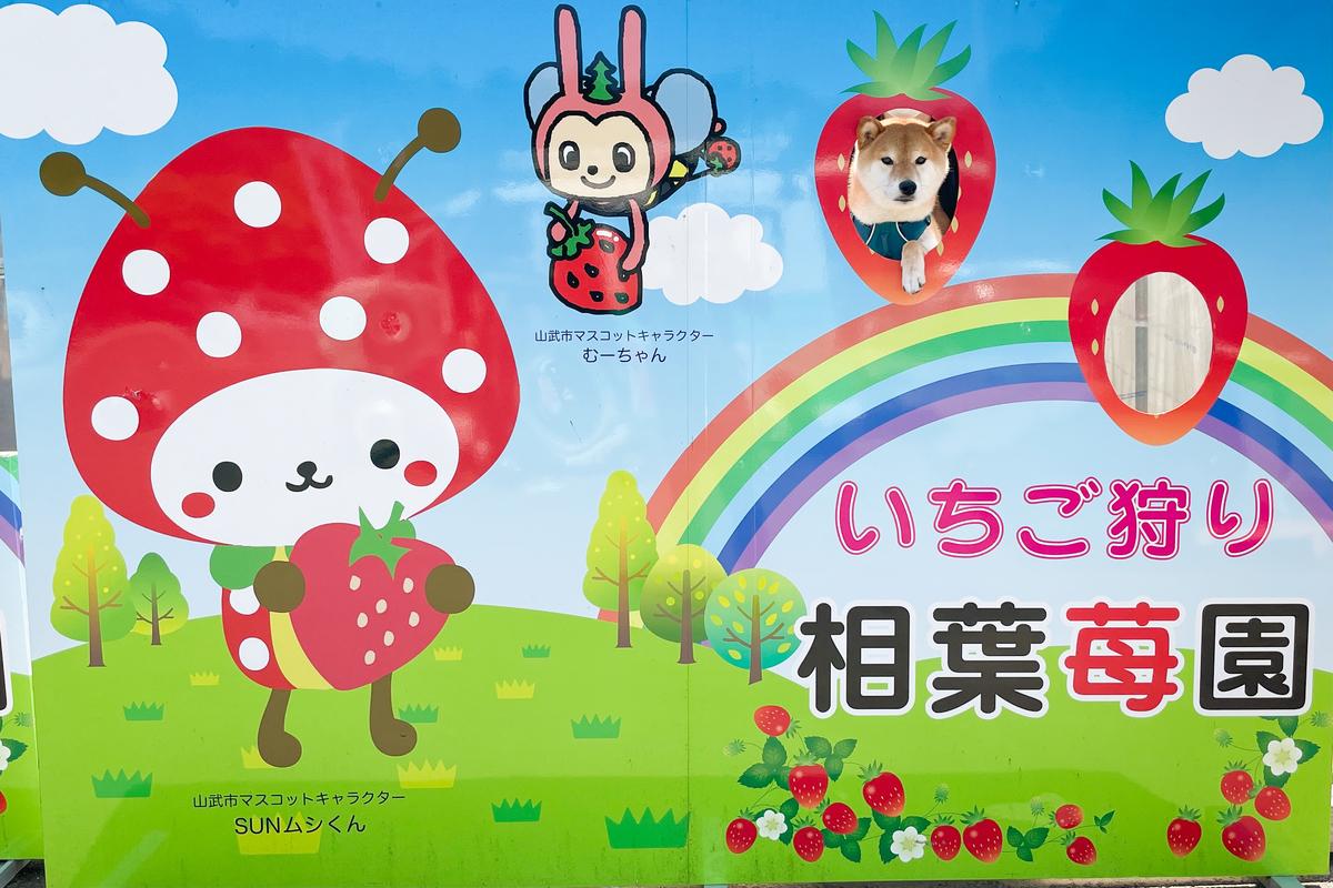 f:id:Daikichi0906:20210425203215j:plain