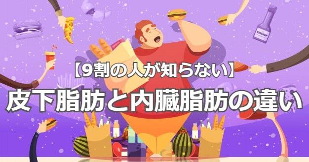 f:id:Daikitan:20200509110642j:plain