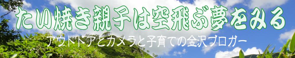f:id:Daisuke-Tsuchiya:20160623123330p:plain